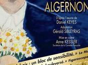 Fleurs pour Algernon partir 7/02/2014