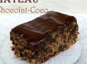 Gâteau moelleux chocolat noix coco sans farine gluten