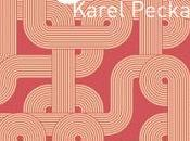 Karel Pecka Passage