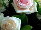 Faune flore