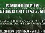Paris (vidéo): rassemblement pour peuple Libyen soutien révolution verte