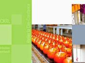 facteurs succès entreprises d'économie sociale région Capitale-Nationale