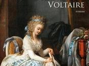 Frédéric Lenormand, Diable s'habille Voltaire (Voltaire mène l'enquête