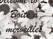 Bem-vindos Boîte Merveilles