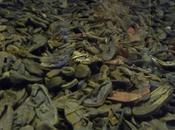 Autour d'Auschwitz, Grégory Mion