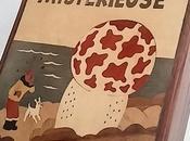 Tintin l'ile Maurice