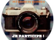 """Défi """"365 Photos quotidien"""" 43ème semaine #43/52"""