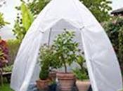 Pensez protéger plantes votre jardin