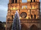 plus grands sapins Noël dans monde