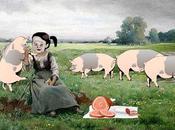 baie cochons