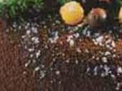 Bavarois chocolat noir amer sauce pistache