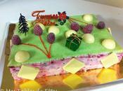 Entremets Noël pistache framboise