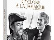 Critique Dvd: Cyclone Jamaïque