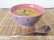 Soupe carottes panais cumin