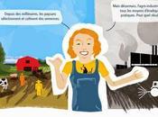 Bataille pour semences: infographie comprendre