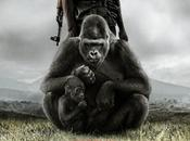 [Film] Virunga: combat d'un parc national contre multinationales
