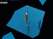 #ArtMTL #33FIFA films incontournables Festival International Film l'art 2015 @ArtFIFA