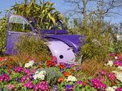 Quimper c'est aussi printemps pour Dyane photos)