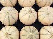 Atelier melons régions recettes!