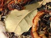 Magret canard séché provençal