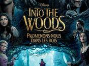 Into woods Marshall avec Meryl Streep, Anna Kendrick, Emily Blunt, James Corden, Chris Pine, Johnny Depp