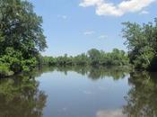 Nouvelle-Orléans entre bayou plantation partie