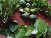 couscous berbère figues vertes