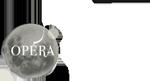 L'Opéra plein édition 2015