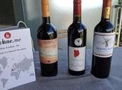 Wine Academy L'effet terroir cabernet Sauvignon