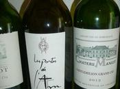 Dégustation l'aveugle vins rive droite Bordeaux deuxième séance)