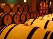 Cave Dagobert concentré raisin, vins d'Alsace