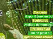 Roumanie folie,avec Institut Culturel Roumain Bruxelles Mons 2015
