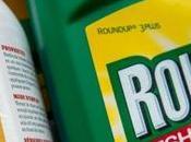 Roundup cancérigène Monsanto était courant depuis plus ans, selon chercheur