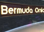 Aujourd'hui, j'ai testé Bermuda Onion