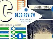 Blog review colère, combat froid