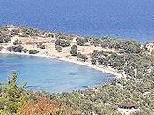 troisième îles Arginuses, mentionnée dans d'anciens textes, retrouvée