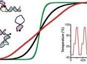 NANOTECHNOLOGIE: thermomètre 20.000 fois plus petit qu'un cheveu NanoLetters
