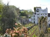 Montmartre Hills