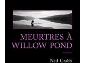 MEURTRES WILLOW POND, Crabb (2016) plumage de...