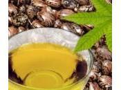 L'huile ricin pour douleurs articulaires