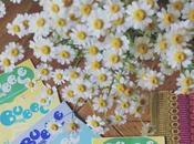 Coup coeur Bubble Mag, bulle d'idées vitaminées pour familles (concours inside