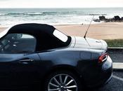 Fiat basques...