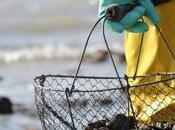 Charente-Maritime comment pêcher palourde
