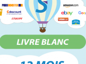 Livre Blanc Shopping Flux pages)