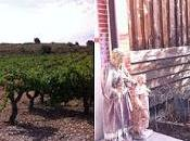 Visite domaine Gauby Calce