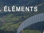 team Mennen Bull Elements
