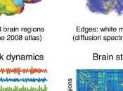 STIMULATION CÉRÉBRALE: commence tout juste comprendre passe PLoS Computational Biology