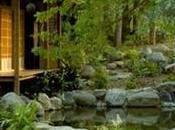 Comment créer magnifique jardin japonais