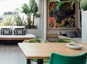 immense salon très verdoyant dans cette maison Lisbonne