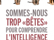 """Sommes-nous trop """"bêtes"""" pour comprendre l'intelligence animaux"""